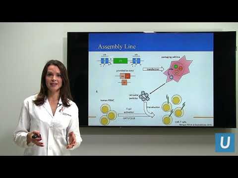 CAR-T at UCLA: Driving the Progress of Engineered Cell Therapy   UCLA Health