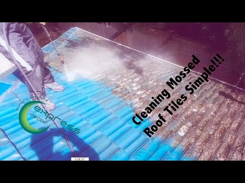 How to clean Moss from roof Tiles | Express Decor Painting