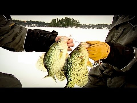Mid-Winter Crappies Away From the Crowds - In-Depth Outdoors TV Season 3, Episode 2