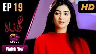 Gunnah - Episode 19 | Aplus Dramas | Sara Elahi, Shamoon Abbasi, Asad Malik | Pakistani Drama