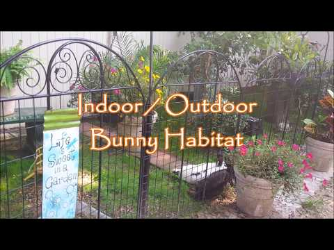 Indoor Outdoor Bunny Habitat Idea
