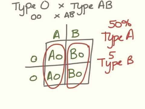 Freshman genetics.  Blood type problems