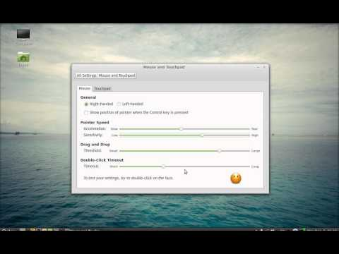 Increase the Mouse and Touchpad Speed ( Sensitivity and Acceleration) in Linux Mint