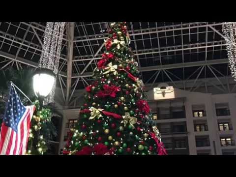 The Christmas Lights at the Gaylord Hotel in Grapevine Texas