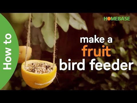 How to make a fruit bird feeder | kids gardening ideas| Homebase