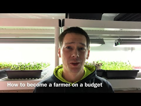 How to start a Microgreens business