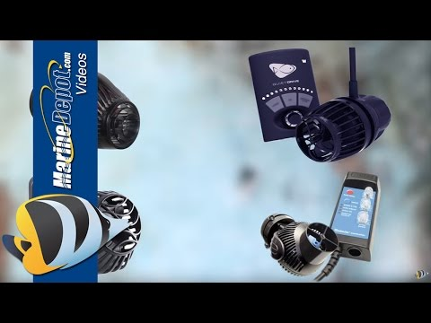 How to Choose the Right Powerhead for your Reef Aquarium