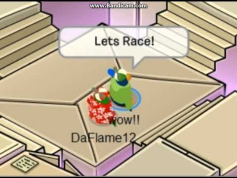 Club Penguin A Day with Rookie