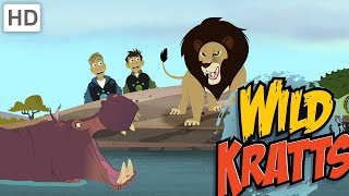 Wild Kratts - Top African Wildlife