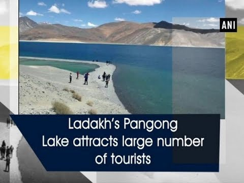 Ladakh's Pangong Lake attracts large number of tourists - Jammu and Kashmir News