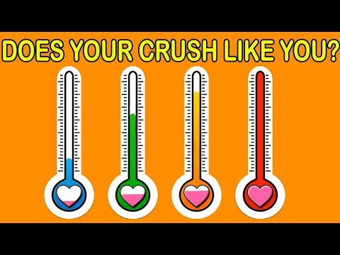 HOW MUCH PERCENT YOUR CRUSH LIKES YOU? Love Personality Test | Mister Test