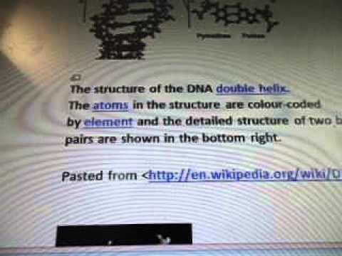 Line 25a7 Alien Vs Human DNA Double Helix Strands Atoms Hydrogen Bonds WOW SETI
