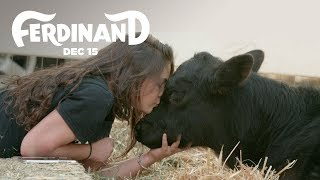 Ferdinand | The Gentle Barn Rescues A Bull | 20th Century FOX