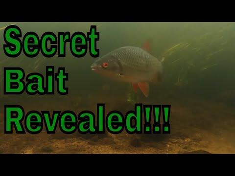 Underwater Uk River Wensum Norfolk/ My Secret Bait!!!