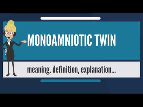 What is MONOAMNIOTIC TWIN? What does MONOAMNIOTIC TWIN mean? MONOAMNIOTIC TWIN meaning