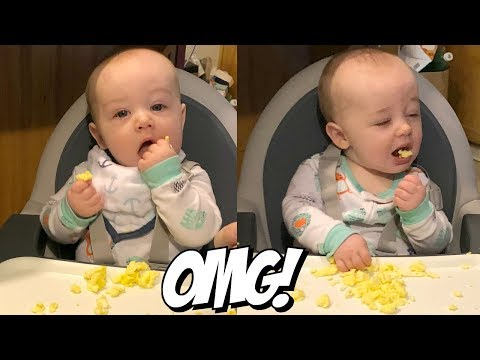 BABY LED WEANING 6 MONTHS BABY EATS SCRAMBLED EGGS | Riley Famly Vlogs