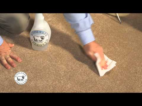 WoolSafe   Ice Cream Stain Removal