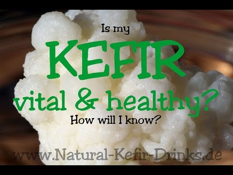How will I know that my milk kefir (grains, fungus) is vital and healthy?