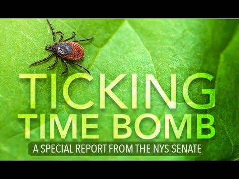 NYS Senate Public Hearing on Lyme and Tick Borne Diseases - 29-08-2017