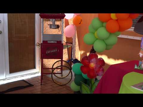 Dora the Explorer decorations with diego