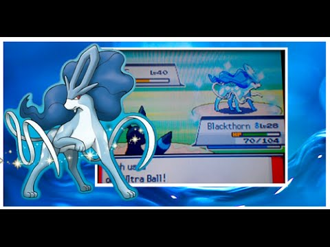 [ISHC 2016 #1] LIVE!! Shiny Suicune after 911 SRs in SoulSilver!