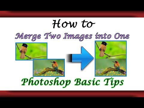 Convert or Merge 2 images into One Vertically - Dual Method |Photoshop Basic|