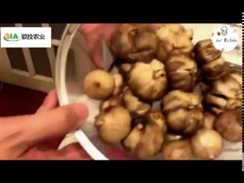(DIY)How To Make Black Garlic at Home