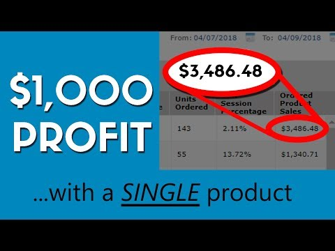 How I Made $1,000 (PROFIT) Last Weekend Selling on Amazon FBA