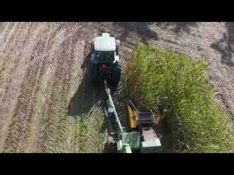 RolleyView Farms || Chopping Corn Pull Type JD3975 Dion Corn Head || Chilliwack BC