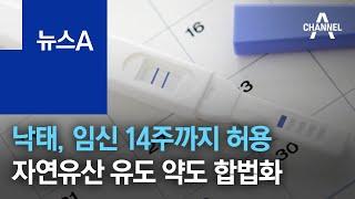 낙태, 임신 14주까지 허용…자연유산 유도 약도 합법화  | 뉴스A