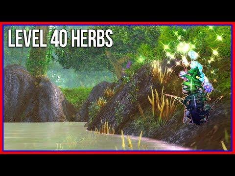 Level 40 Herb Farming: Sungrass, Firebloom, Blindweed, Gromsblood, Purple Lotus, Ghost Mushroom