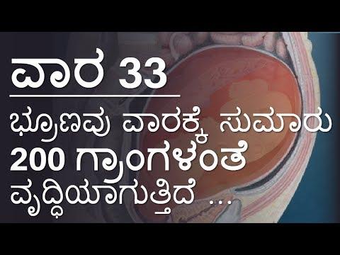 Pregnancy   Kannada   Week by Week   Week 33