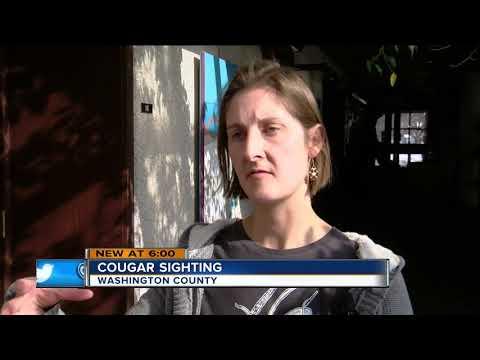 Wisconsin DNR confirms cougar sighting in Washington County