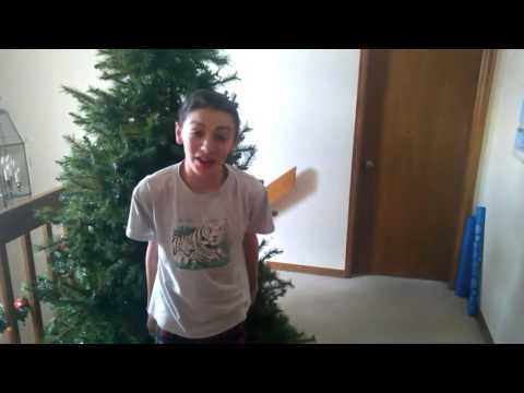 How To Fluff A Christmas Tree