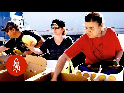 Fighting Food Waste on the Border