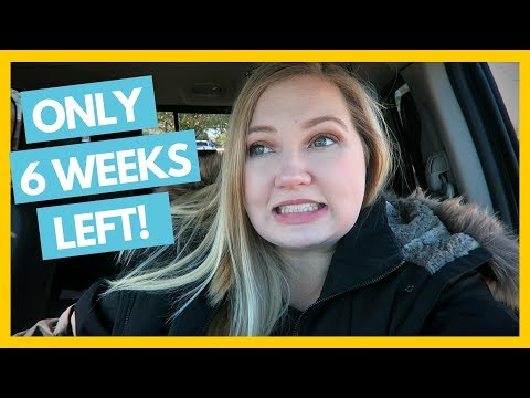 6 Weeks Til Baby's Due Date, Costco, & More Baby Organizing 👶 Full Time RV Family