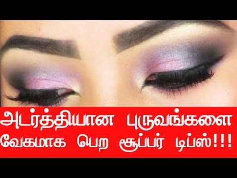 Home Remedies to Grow Thick Eyebrows Fast - Beauty Tips in Tamil