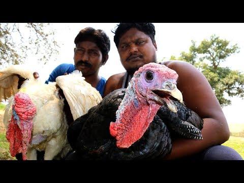 Turkey Dum biryani By Country boys