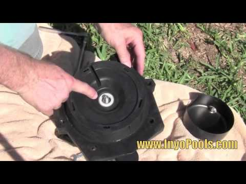 How to: Replace a Pool Pump Motor