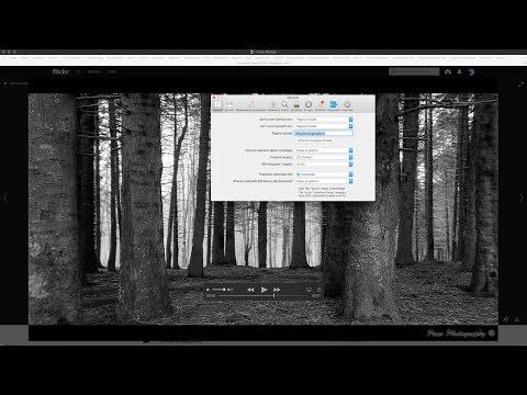 Stop autoplay di iTunes dopo avere scaricato un file audio con Safari su iMac