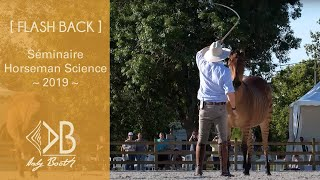 Download Séminaire Horseman Science 2019 Video