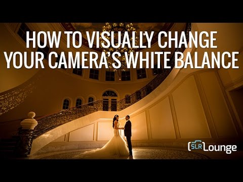 How To Visually Change Your Camera's White Balance | Minute Photography