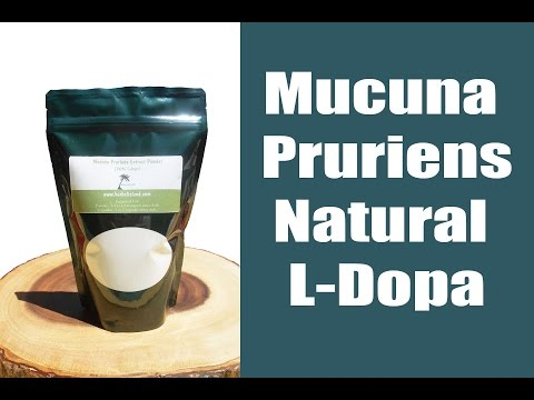 Mucuna Pruriens Review and Experience