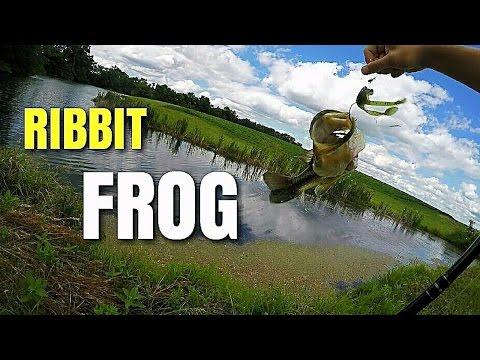 Bass Fishing Ribbit Topwater Frog