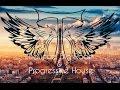 Bounce Big Room Progressive House Electro House Mashup 2014