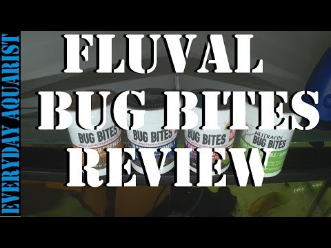 Fluval Bug Bites | Natural, Healthy & Sustainable Fish Food