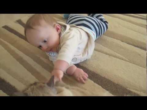 First Crawls at 7 Months!!