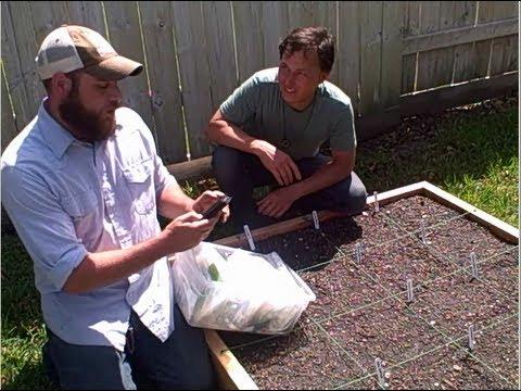 Make Money by Helping People Grow Food in Raised Bed Gardens