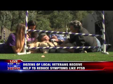 KUSI Good Morning San Diego Highlights Paws for Purple Hearts