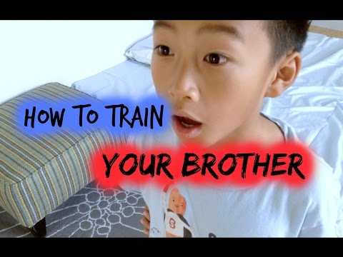 How to train your brother | Alyssa T.